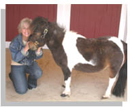 Improving Your Animal's Life – A 4-part Webinar Series With Industry Experts