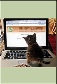 Animal Communication Webinar