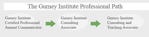 The Gurney Institute